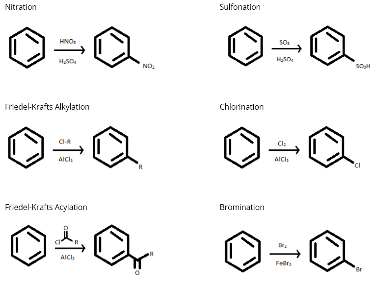 Composition of Cells